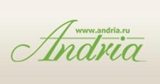 Розничный поставщик комплектующих «Andria», г. Владимир
