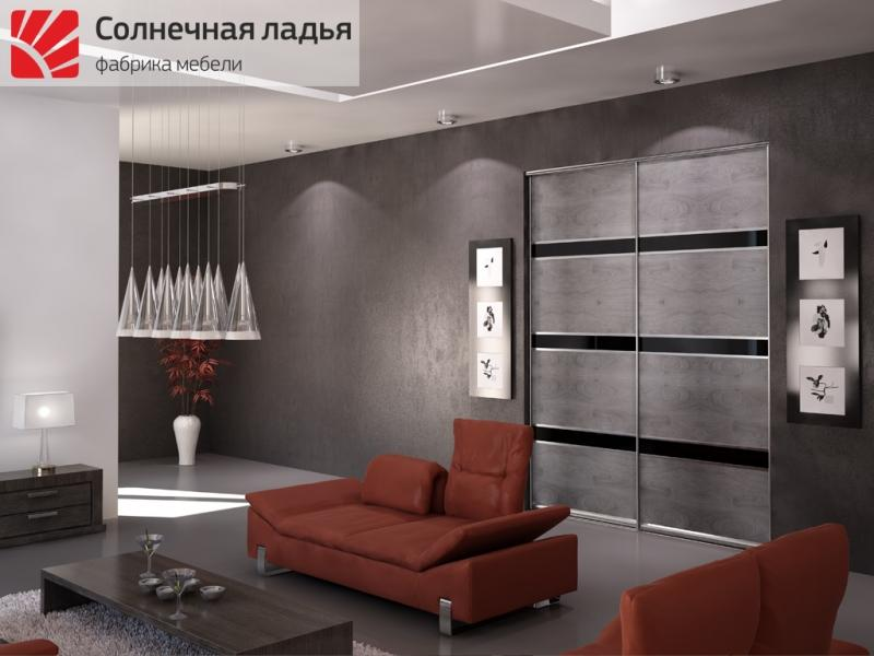 Шкаф - купе для гостиной 18