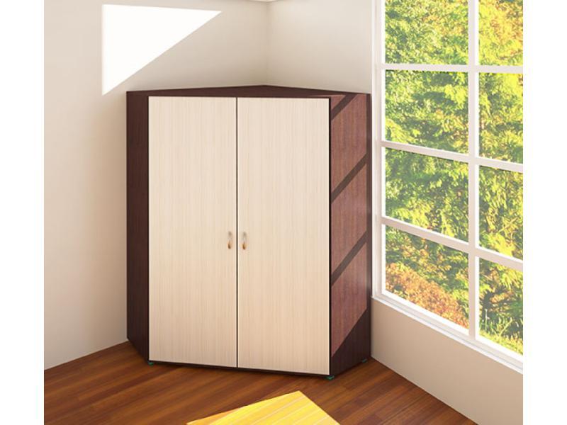 Шкаф 2-ух дверный угловой для одежды