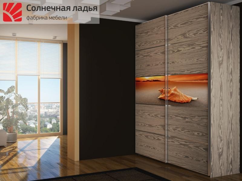 Шкафы купе в гостиную evita.