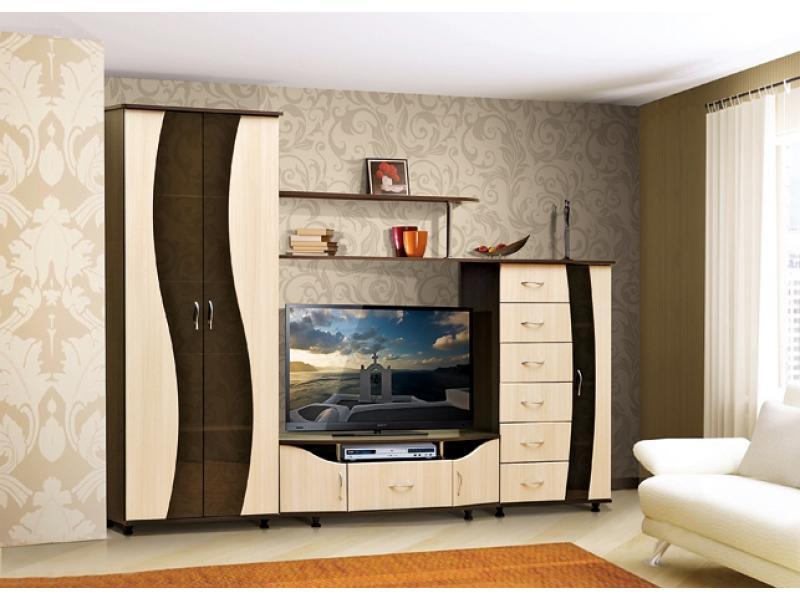 """Мебельная фабрика """"фант мебель"""", г. волжск / гостиная стенка."""