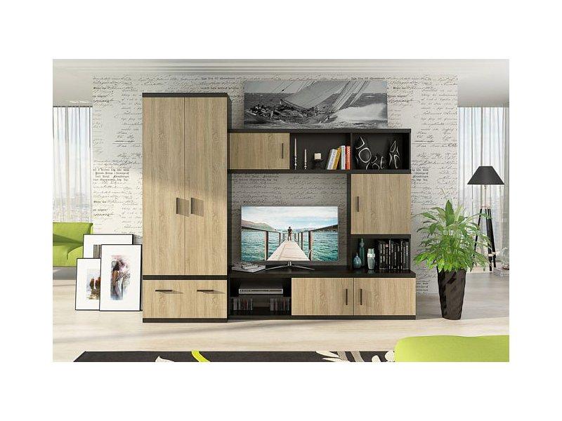 """Мебельная фабрика """"фиеста-мебель"""", г. владимир / гостиная дж."""