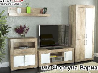 Гостиная Фортуна 1 - Мебельная фабрика «Элна»
