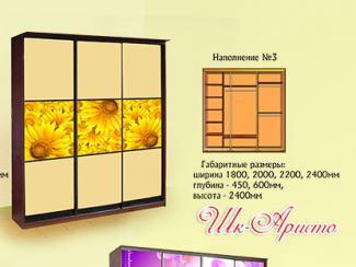 Шкаф «Аристо» (наполнение №3) - Мебельная фабрика «Мебель Прогресс»