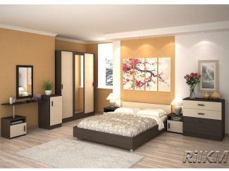 Спальный гарнитур Бася-1