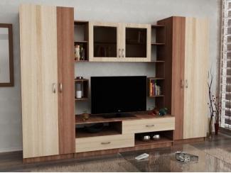 Гостиная со шкафом Барс  - Мебельная фабрика «Гермес»