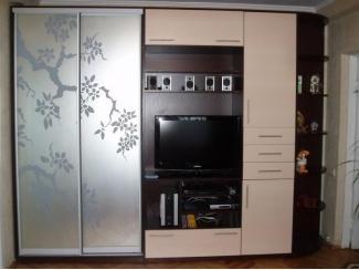 Шкаф-купе в гостиную   - Мебельная фабрика «Мебель СаЛе»