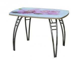 Стол Арго нераздвижной - Мебельная фабрика «Триумф-М»