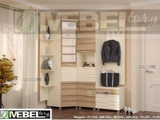 Прихожая модульная Альфред 4 - Мебельная фабрика «Мебель Тори»