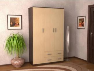 Шкаф Этюд-2 - Импортёр мебели «Мебель Глобал»