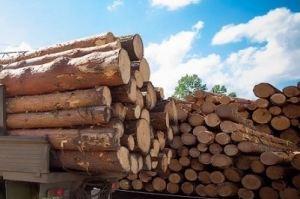 Лес кругляк - Оптовый поставщик комплектующих «Wood Side»