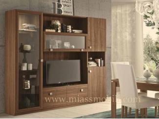 Шкаф в гостиную С 09 - Мебельная фабрика «Миасс Мебель»