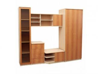 Гостиная стенка Феникс–3 - Мебельная фабрика «Росвега», г. Ульяновск