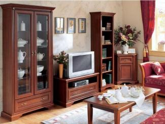 Гостиная стенка Стилиус - Импортёр мебели «БРВ-Мебель (Black Red White)»