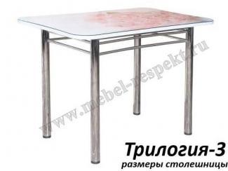 Стол обеденный Трилогия 3 - Мебельная фабрика «Респект»