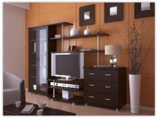 Гостиная стенка Онега-1 - Изготовление мебели на заказ «Орион»