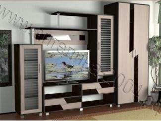 Гостиная под телевизор Мелодия  9 - Мебельная фабрика «Ангелина-2004»