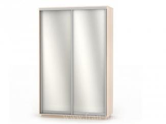 Двухдверный шкаф-купе с двумя зеркалами Экспенс Дуо  - Мебельная фабрика «Фран»