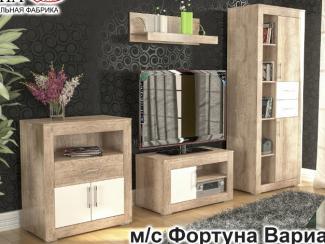 Гостиная Фортуна 2 - Мебельная фабрика «Элна»