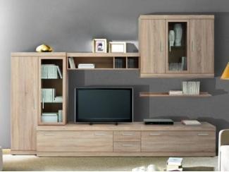 Гостиная-стенка - Мебельная фабрика «Люкс-С»