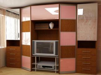 Гостиная стенка 10 - Мебельная фабрика «ДСП-России»