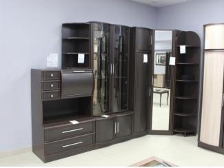 Шкаф в гостиную Татьяна 12 с зеркалом - Мебельная фабрика «Мебель Кошелев»