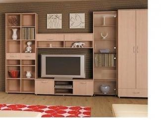 Стенка в гостиную - Мебельная фабрика «Папа Карло»