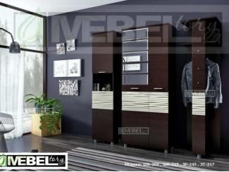Прихожая модульная Альфред 2 - Мебельная фабрика «Мебель Тори»