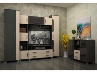 Мебель для гостиной «Сонет»