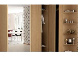 Шкаф-купе 10 - Мебельная фабрика «Алиса»