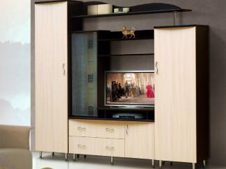 Гостиная стенка Волна-1 - Мебельная фабрика «Виктория»