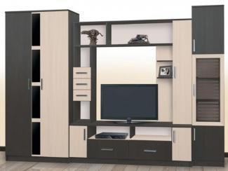 Гостиная стенка Гамма-12 - Мебельная фабрика «Северная Двина»