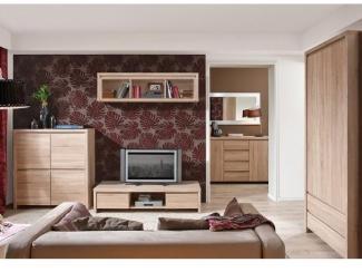 Гостиная Каспиан дуб сонома - Импортёр мебели «БРВ-Мебель (Black Red White)»