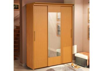 Шкаф купе  3-х дверный - Мебельная фабрика «Аджио»
