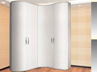 Радиусный распашной шкаф - Мебельная фабрика «Бакаут»