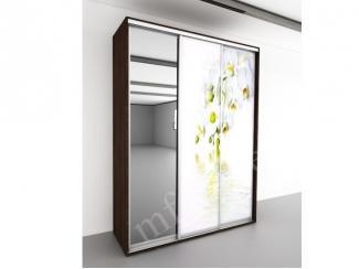 Шкаф-купе Белая Орхидея 3 - Мебельная фабрика «МФ-КУПЕ»
