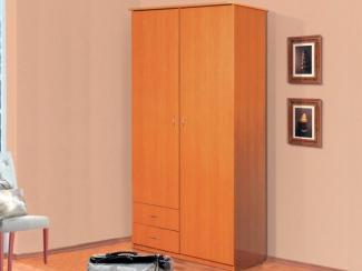 Шкаф 2-х дверный - Мебельная фабрика «Аджио»