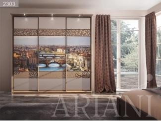 Шкаф-купе с фотопечатью и зеркалом Ди Сопра - Мебельная фабрика «Ариани»