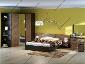 Спальня со шкафом Сагара 3 - Мебельная фабрика «Эльба-Мебель»