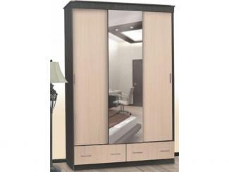 Шкаф-купе 5 - Мебельная фабрика «Северная Двина»