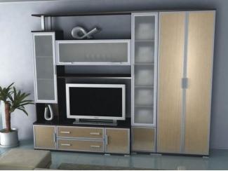 Гостиная Аврелия 5 со шкафом - Мебельная фабрика «Артемебель», г. Владимир