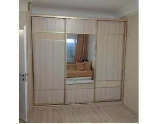 Шкаф-купе - Мебельная фабрика «Альфа-Мебель»