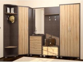 Прихожая со шкафами Еленсия 7 - Мебельная фабрика «Дил-Мебель», г. Ульяновск