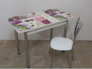 Стол обеденный прямоугольный Тюльпаны - Мебельная фабрика «Астера (ТМФ)»
