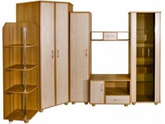 Гостиная Медео 5М - Мебельная фабрика «Пинскдрев»
