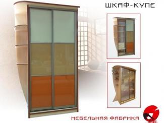 Шкаф-купе  - Мебельная фабрика «Айко»