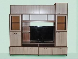 Набор мебели для гостиной Александра 9.1 - Мебельная фабрика «МВМ», г. Волжск