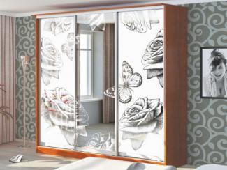 Шкаф-купе Пескоструйная обработка 562с - Мебельная фабрика «Бител»