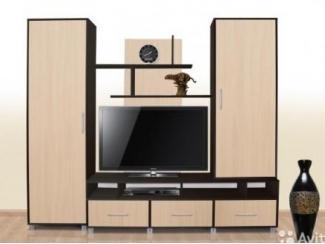Небольшая гостиная стенка  №9 - Изготовление мебели на заказ «Мебель для вашего дома»