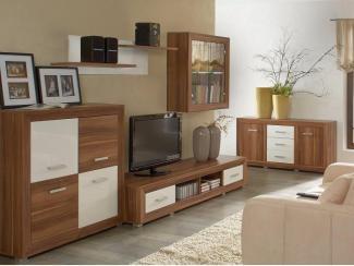 Гостиная стенка Ограл - Импортёр мебели «БРВ-Мебель (Black Red White)»